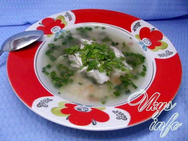 рецепты с суп фото индюшатины из