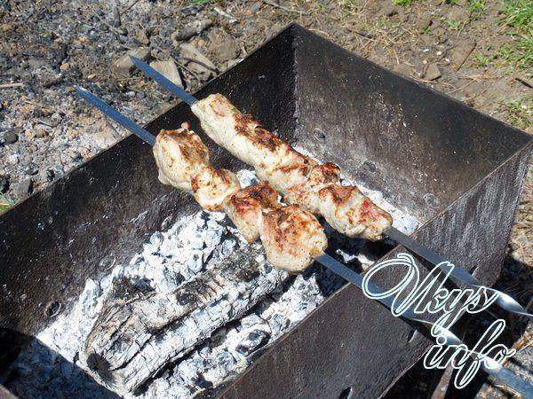 shashlyk iz svininy s majonezom foto 5