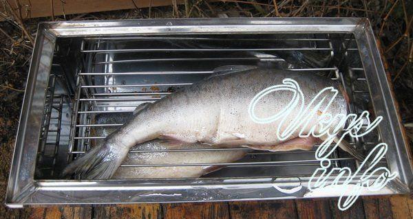 Как закоптить рыбу в домашних условиях горячего копчения