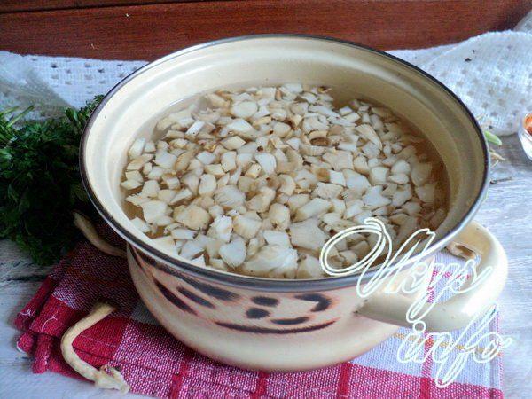 sup s gribami i syrom 3
