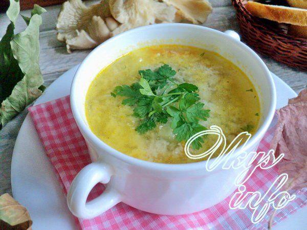 Суп с грибами вешенки