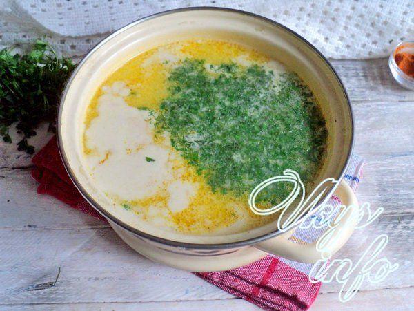 sup s gribami i syrom 8