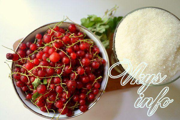 Желе из красной смородины на зиму фото ингредиенты