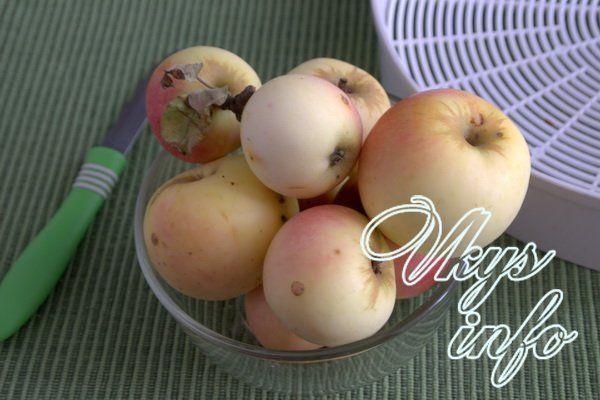 Правила сушки яблок в электросушилке ингредиенты