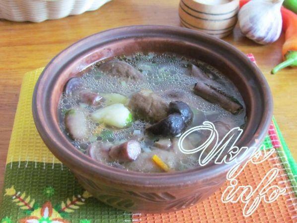 sup iz lesnyh gribov 11